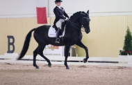 DUCADO YR - GP DRESSAGE